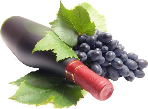 tinos-vacation-grapes tinos vacation grapes